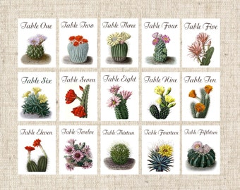 Cactus Table Numbers, Desert Table Tents, Cactus Table Cards, Desert Wedding Table Cards