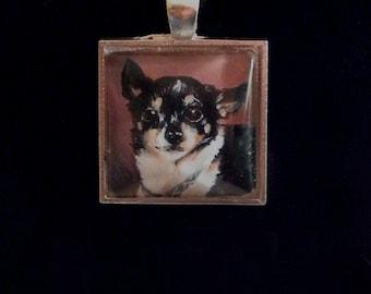 Minature Painting Custom Pet Portrait Pendant Necklaces-Dogs-Cats-Horses-Animals
