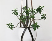 Recycled Leather Plant Hanger with Brass Rivets in small, medium or large