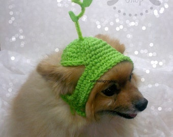 Pet Daisy Spring Flower Beanie (XS-XL)
