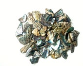 10 random pieces Abalone Paua shell fragments mother of pearl undrilled jewellery craft art free form small medium large