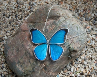 FREE SHIPPING  Real Whole Blue Morpho Butterfly Encased in Hand Cut Glass and Soldered Pendant Necklace