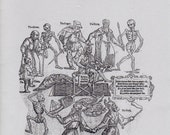 Stuart Press Living History Series:  The Shaking of the Sheets - Death 1350-1600 Reference Book