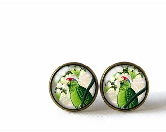 Glass Dome Stud Earrings, Parrot, A-216