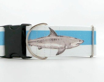 Sharks and Stripes Dog Collar (Martingale, Buckle or Tag)