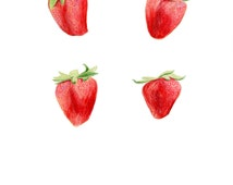 Strawberry Art // Food Illustration // Archival Art Print, Red, fruit, farmhouse