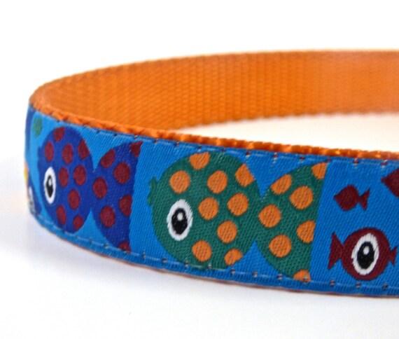 Colorful fish parade dog collar purple dog collar ribbon dog for Fish dog collar