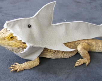 Great White Shark Costume for Bearded Dragons! Shown on Discovery's Shark Week!!!