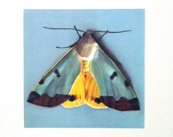 My little butterfly - art print- wall art- wall decor- home decor art print - yellow - blue