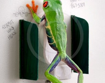 Men's Room, Funny Frog Photo, Bathroom Art, Bathroom Humor