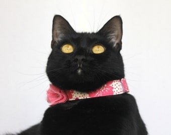 Pink Cat Flower Collar with Bold Colors