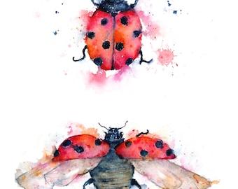 Ladybug Illustration - Ladybird Illustration - Watercolor print