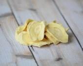 Chips de panais pour lapins