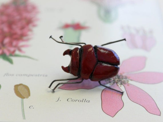 Entomology sciart jewelry red beetle bug brooch