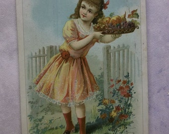 Pretty Girl w/ Basket of Fruit - Picket Fence - Victorian Trade Card - Quaker Bread - Chicago