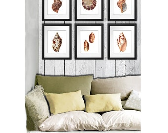 Seashell art Home Decor Art Prints Set of 6  prints, Beach Decor, seashell decor conch scallop shells neutral brown wall art. gift for her