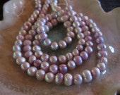 "2 - 15"" Strands Lavender Fresh Water Pearl  Bead Strands!"
