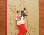 Nuri the French Bulldog Holiday Christmas Felt Stocking Candy Cane Blank Note Card with Envelope