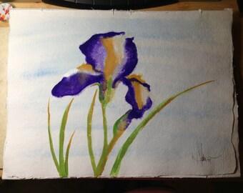 11 x 15 Original Watercolor - Purple Iris
