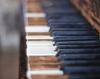 piano keys - limited edition photograph