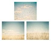 Nature photography - Set of 3 nature photos - pale blue, mint, aqua, teal, yellow,  wheat fields, birds, clouds, landscape art