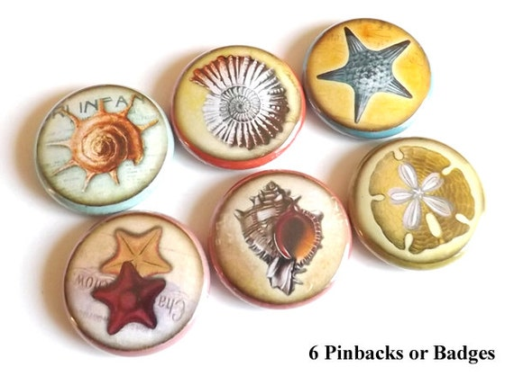 Sea Ocean Beach PINBACK button PINS BADGES stocking stuffers starfish shells sand dollar party favors nature nautical gifts magnets coastal