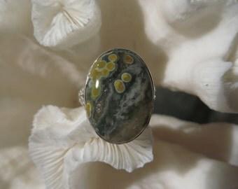 Beautiful Druzy Ocean Jasper Ring Size 7