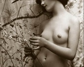 Old Vintage Antique Art Deco c1920's Nude Naked Lady Black and White Photo Reprint 7x5