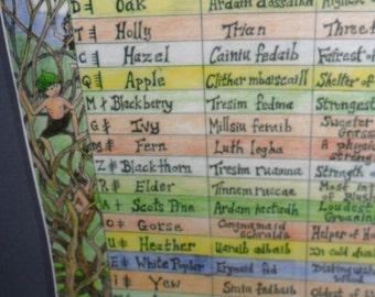 Trees-Ogham Alphabet Poster