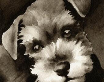 MINIATURE SCHNAUZER Puppy Sepia Art Print Signed by Watercolor Artist DJ Rogers