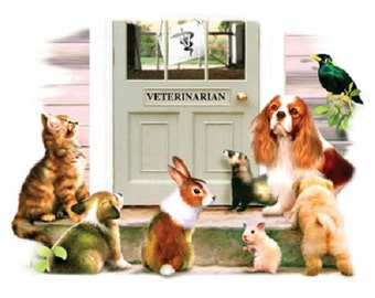 """Cavalier King Charles Spaniel w Friends called """"Visit with the Vet"""" on ONE 16 inch Fabric Panel to Sew. Actual picture is 8"""" x 11"""" on white."""