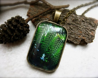 Green Fern Nature Photography Necklace - The Fern