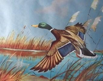 Vintage Framed Foil Art - Blue and Brown Mallard Duck