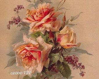 Victorian Summer Delights, Art Print, Catherine Klein, Half Yard Long, Heliotrope, Shabby Chic