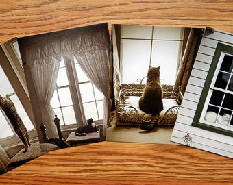 Postcards Cute Window Kitty Cats Kittens Art Photo Post Cards Stationery