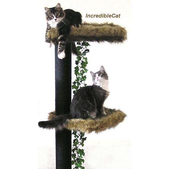 Creative Cat Towers: LUXURY Cat FURNITURE Trees Best Cat Beds Designer By
