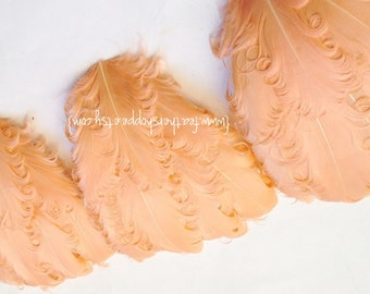 SET OF 5 - Peach Nagorie Curled Goose Feather Pads