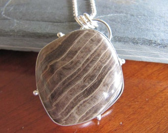 Petrified Wood and Sterling Silver Necklace