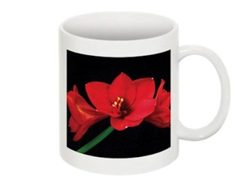 Red Amaryllis Flower Coffee Mug With The Image On Both Sides A Home Trends Gift Idea or Office Accessory Gift for Her or Him