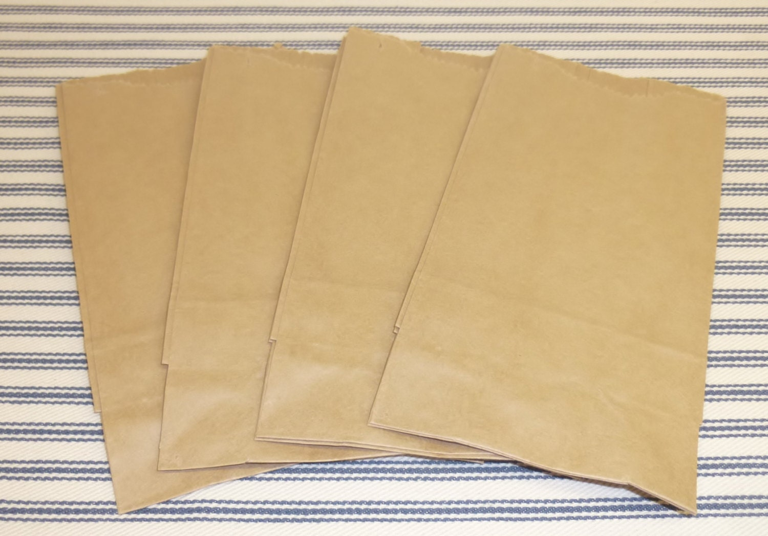 Small Kraft Brown Paper Bags Set Of 25