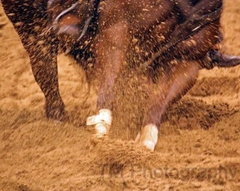 Cutting Horse, Horse Photography, Action Photography, Fine Art Photography, Cowboy Art, Western Art, Equine Art