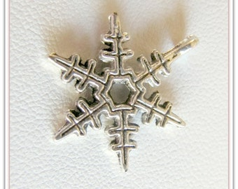 Snowflake  charms,  Snowflake drops, Pewter Snowflakes,  Pendant Charms,  Bracelet Charms, Wine glass charms. Silver tone,10 pieces, #1001