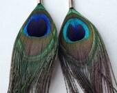 Fine Jewellery Sterling Silver Peacock Earrings