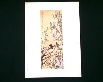 Japanese Print Flowers Bird Vintage Japanese Magazine Insert Balmy Spring Weather