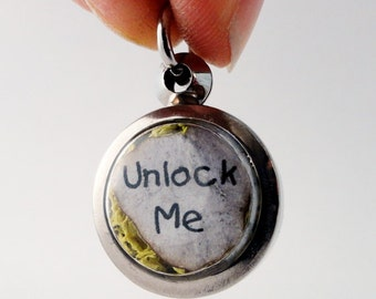 Unlock Me, i carry your heart with me, Moss Terrarium Locket Necklace, Faux Stone Heart,  Mini Curio Display, Natural World LK2