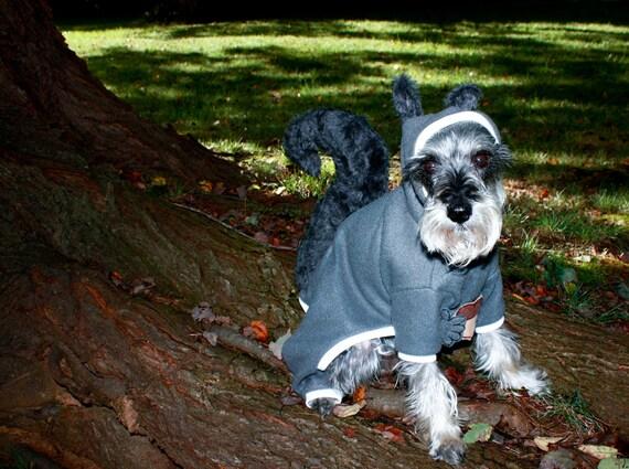 Squirrel Suit Costume Pet Squirrel Outfit Costume