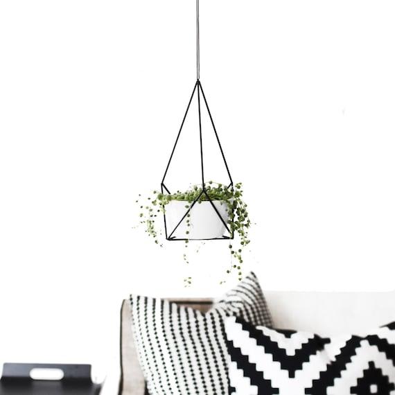detalle verde, planta colgante, dekoloop