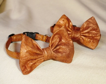 Bowtie Collar For Cats Copper Fairy Frost