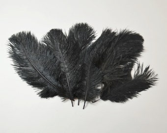 "Petite Ostrich Drab Feathers - Black, 4-8"" (12pcs)"