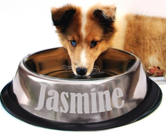 Engraved Dog Bowl - Etched with Name - Personalized Doggy Dish - Non Skid - Personalized Pet - Chrome - Stainless Steel